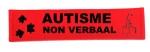 Autogordelhoes autisme non verbaal