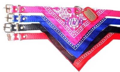 Halsband bandana met naam geborduurd en dog tag mini RVS aanbieding