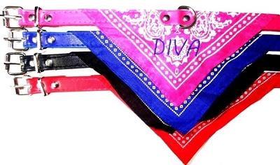 Halsband bandana met naam geborduurd
