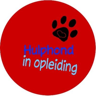 Hulphond button 1 stuk verschillende uitvoeringen