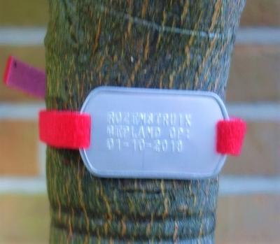 Plantenlabel eigen tekst met klittenband