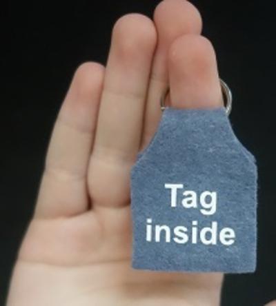 Dogtag silencer for dogs bedrukt met Tag Inside voor mini tag