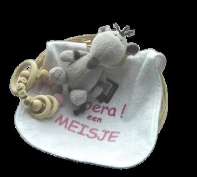 Kraampakket bijtring met naam, muis en slab roze of blauw in mand